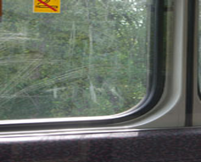 Public Transport Scratched Glass Repairs